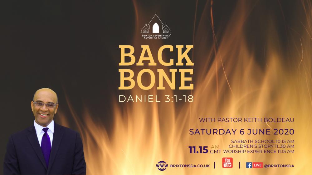 Back Bone Image